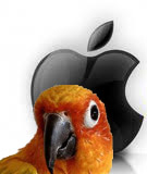 parrot_app