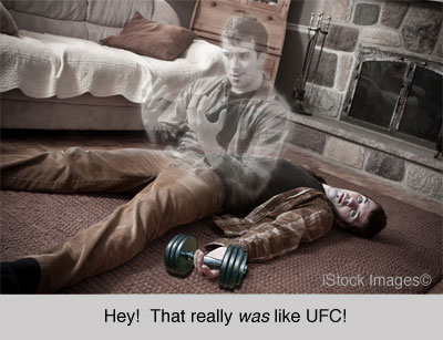 ufc_knockout