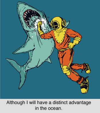 shark_karate