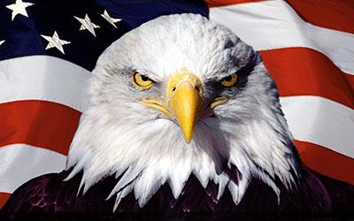 America-eagle