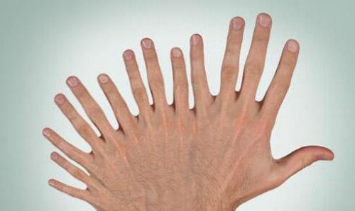 handfingers